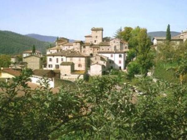 Vendita locale commerciale a Città Di Castello - Badia Petroia img