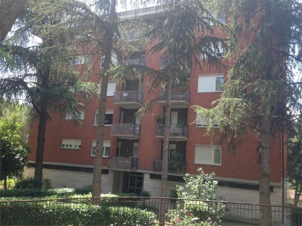 Appartamento in vendita a perugia ferro di cavallo con - Affitto appartamento perugia giardino ...