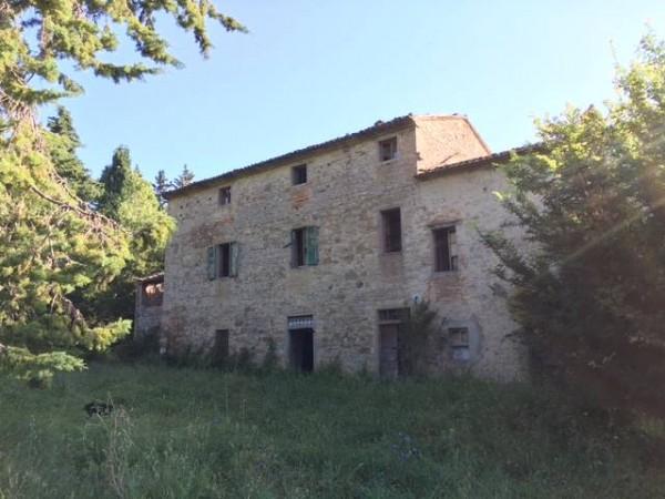 Rustico/Casale a Città Di Castello - Valdipetrina img
