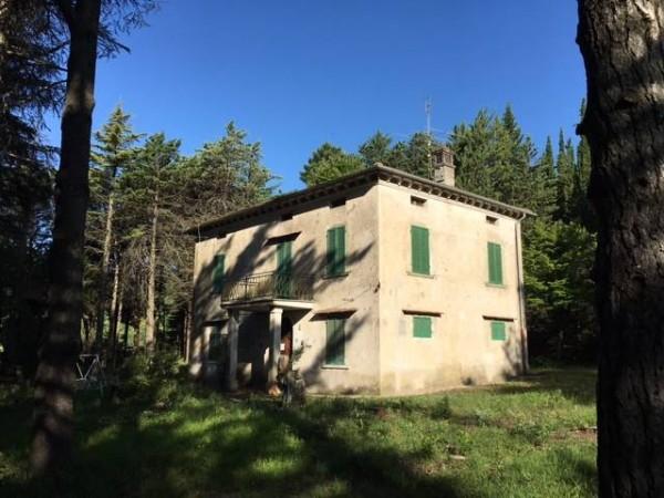 Casa singola a Città Di Castello - Valdipetrina img