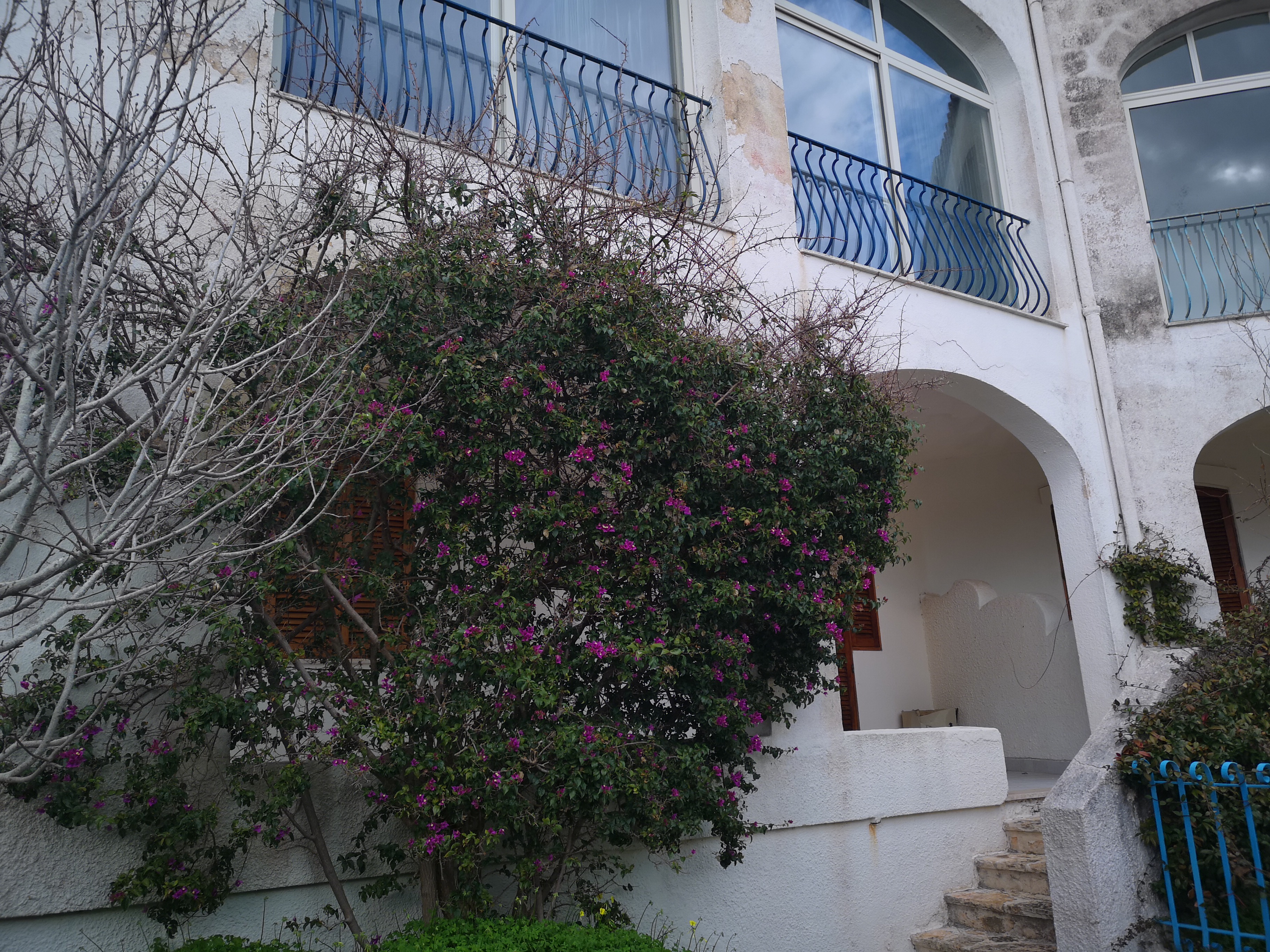 Appartamento, via Belvedere, centro, Vendita - Santa Cesarea Terme (LE)